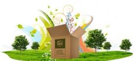 Pertimbangan Perusahaan dalam Penggunaan  UPS Terhadap Lingkungan