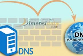 DNS Server Pada Jaringan