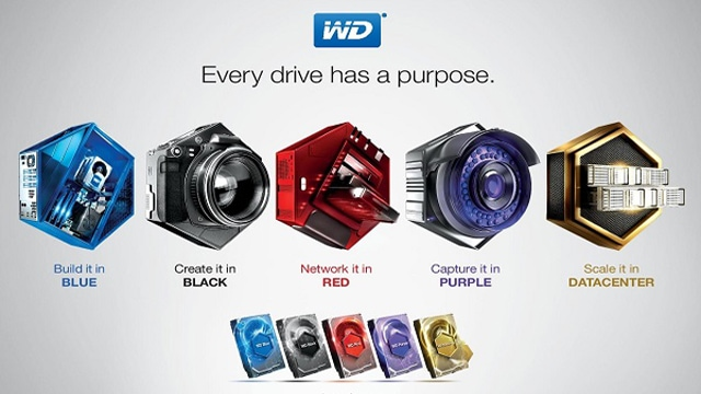 Perbedaan Warna Hardisk WD Black, Red, Gold, Green, Blue dan Purple